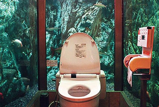 54caaa884f9ad_-_7-aquarium-bathroom-xln