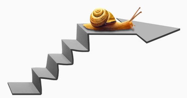 Snail on Staircase
